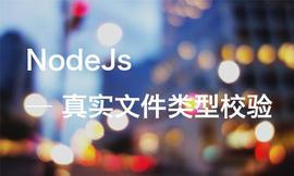 NodeJs文件真实类型校验
